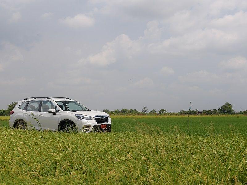 คุ้มมั๊ย? ลองขับ All New Subaru Forester 2.0i-L ประกอบไทย